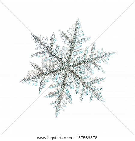 Snowflake isolated on white background. This is real snow crystal macro photo: large stellar dendrite with traditional shape and complex structure with symmetrical arms and many side branches.