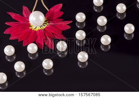 White pearls necklace on black background. Focus on the big pearl from the left corner over red petals!