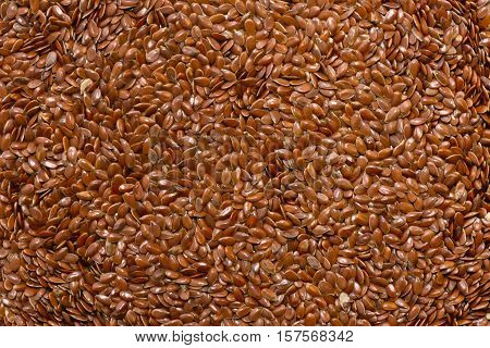 Flax seed background, color image, horiozntal image, background