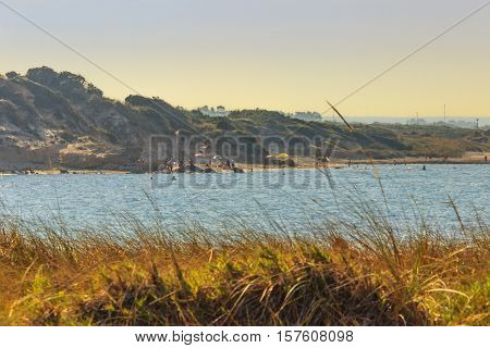 Summer seascape: Torre Guaceto Nature Reserve .BRINDISI (Apulia)-ITALY-Mediterranean maquis: a nature sanctuary between the land and the sea.