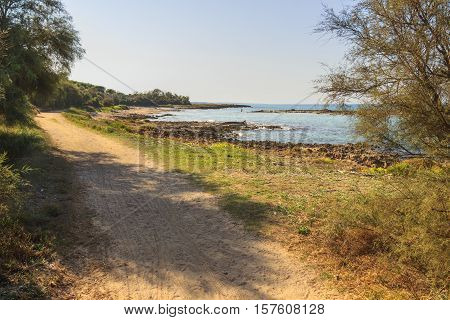Summer seascape,Salento coast: Nature Reserve of Torre Guaceto.BRINDISI (Apulia)-ITALY-Mediterranean maquis: a nature sanctuary between the land and the sea. Nature trail.