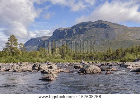 Rocky river streaming through green forest in serene swedish mountain landscape