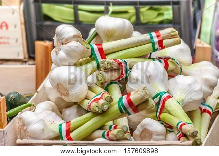 Italian Garlic On The Market