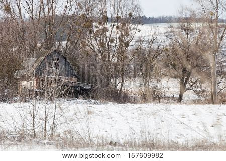 Old abandoned house on lonely forest edge winter landscape snowy area