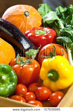 Fruits and vegetables like tomatoes, pumpkin, melons, chili, and grapes arranged in a group, natural still life for healthy food
