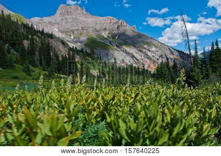 Flat Top Mountain in the gorgeous Chicago Basin near Telluride Colorado USA in the wilderness and national Forest area of Mount Sneffels
