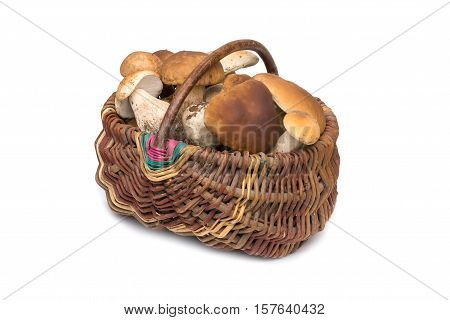 Porcini mushrooms in a basket isolated on white.