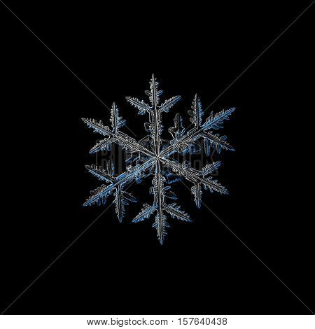 Snowflake isolated on black background. This is macro photo of real snow crystal: large stellar dendrite with traditional shape and six ornate arms, containing side branches.