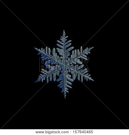 Snowflake isolated on black background. This is macro photo of real snow crystal: large stellar dendrite with traditional, complex shape and long arms with lots of side branches.