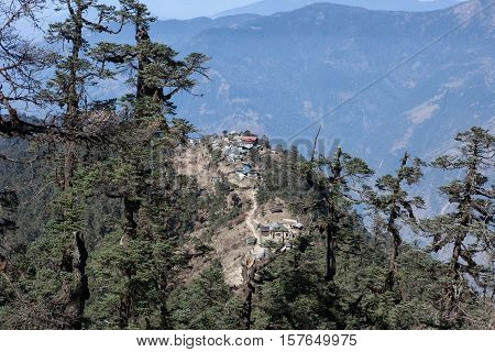 Remote Mountain Village In Himalayas, Nepal. Tall Himalayan Pine Trees On The Background Of The Hill