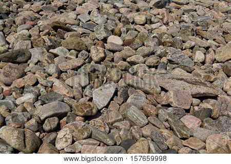 gray stones lie on the ground in large numbers.