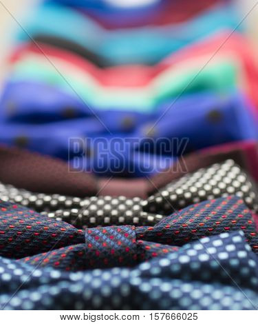 Colorful Bow Tie with Flowers. Red Green Blue Yellow Magenta Purple Violet Colors...