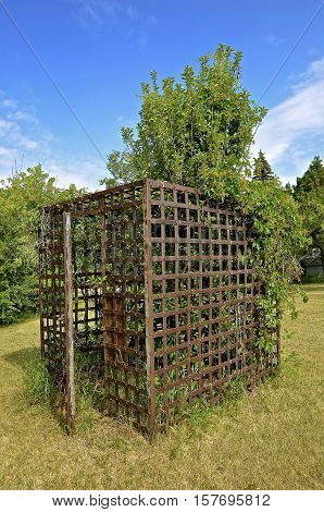 Trees  grow through the cage of an enclosed prison cell used as a lawn decoration when removed from a former old jail.