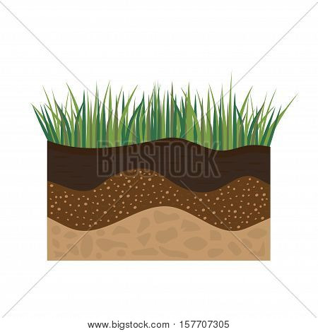 soil profile and soil horizons piece of land with green grass