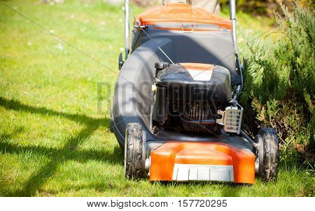 Gardening. Mowing green lawn with red lawnmower in spring day.