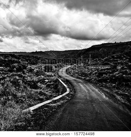 Amazing tropical landscape of rural road across the field volcanic lava. Indonesia - Bali. Black-white photo.