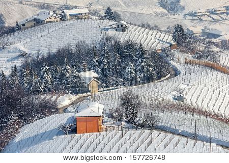 Rural house and snowy vineyards on hills in Piedmont, Northern Italy.