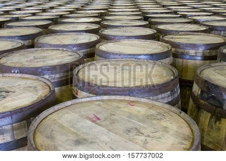 Rows Of Oak Barrels In Bourbon Distillery