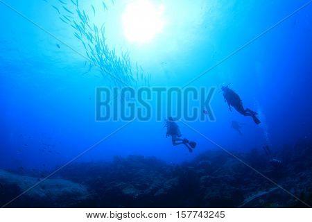 Scuba dive with fish