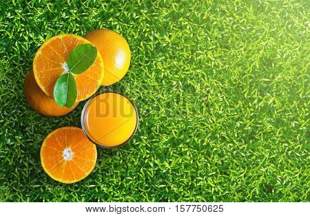 Glass of orange juice from above on green grass. Empty ready for your orange juice fruit product healthy display or montage.