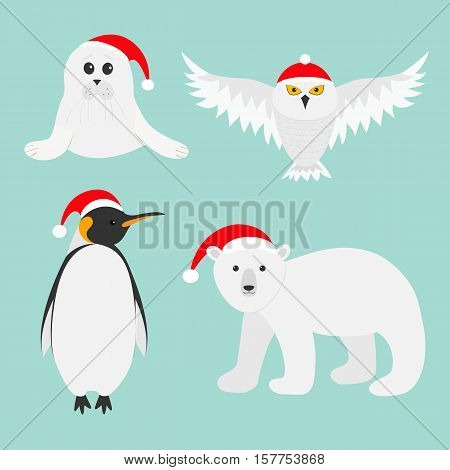 Arctic polar animal set. White bear owl king penguin Emperor Aptenodytes Patagonicus Seal pup baby harp in red Santa hat. Merry Christmas card. Winter antarctica blue background Flat design. Vector