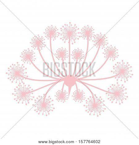 pastel pink silhouette dandelion with pistils vector illustration