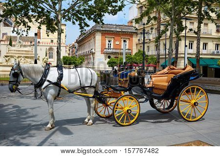 Seville Puerta Jerez horse carriage in Andalusia Sevilla spain