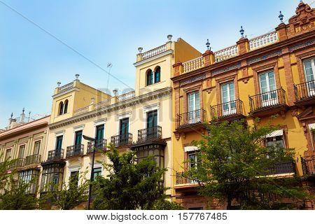 Seville San Fernando street in Andalusia Sevilla spain
