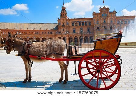Seville Sevilla Plaza de Espana donkey carriage Andalusia Spain square