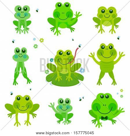 Vector illustration collection of cute frogs and toads.
