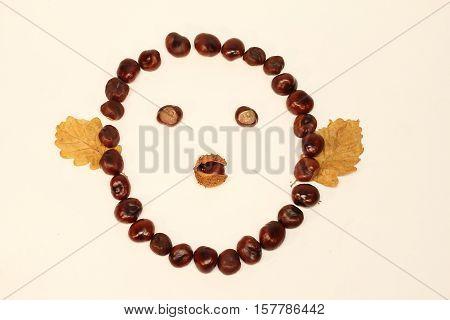 Faces chestnut fruit / Funny smiley chestnut fruit