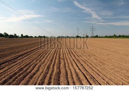 Furrow / Arable / Freshly plowed field