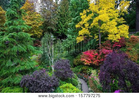 The world-famous masterpiece of landscape - landscape architecture. Butchart Gardens - beautiful gardens on Vancouver Island. Flower beds of colorful flowers and walking paths for tourists