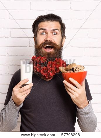 handsome bearded man with stylish mustache and long beard with red autumn flowers on smiling face holding glass of milk with chocolate chip cookies on white brick wall background