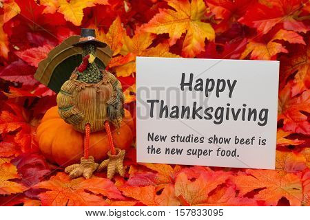 Funny Happy Thanksgiving Greeting Some fall leaves and a turkey sitting on a pumpkin and a greeting card with text Happy Thanksgiving and beef is a super food