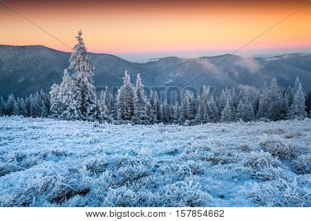 Colorful Winter Sunset In The Frosty Mountain Valley.