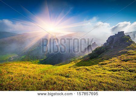 Foggy Summer Scene In Carpathian Mountain