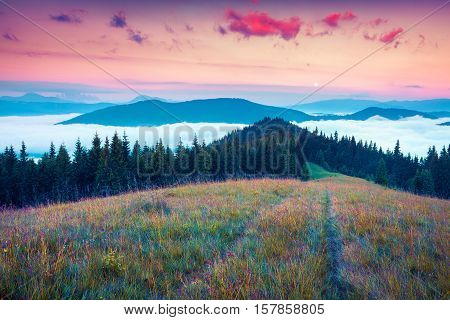 Moonrise In The Foggy Mountains With A Field Of Fresh Grass In
