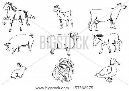 Pets Farm. Pencil sketch by hand. Vector image