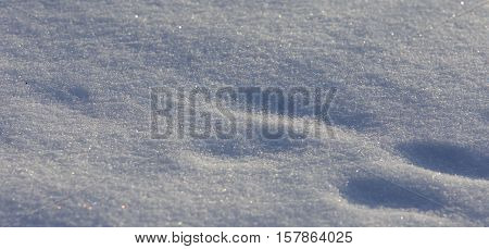 Beautiful Isoalted Picture Of A Sunny White Snow With The Footprints