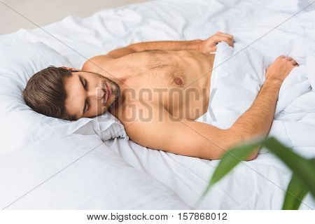 Sweet dream. Cute young man is sleeping at home with pleasure