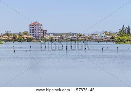 Birds Resting At Violao Lake In Torres