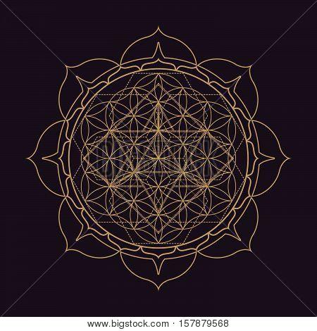 Vector Mandala Sacred Geometry Illustration.