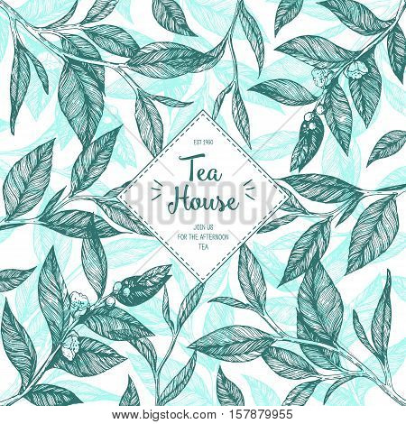 Vector tea illustration. Tea leaves concept frame illustration. Menu label with tea leaves. Linear graphic. Design template