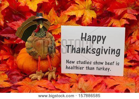 Funny Happy Thanksgiving Greeting Some fall leaves and a turkey sitting on a pumpkin and a greeting card with text Happy Thanksgiving and beef is healthier than turkey