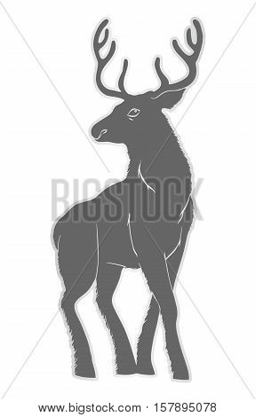 Illustration of a deer with horns. Nature, and animals. Cloven-hoofed. Design for training manuals