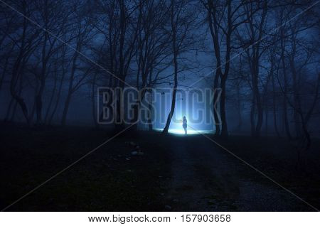 ight in the dark forest. The girl in the mist among the trees at night