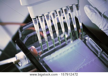 loading amplified DNA samples to agarose gel with multichannel pipette. Toned Image poster