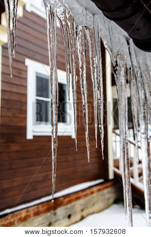 Icicles Hang From The Roof And Dripping  Them. Spring.
