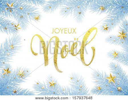 Merry Christmas in French Joyeux Noel greeting card. Joyeux Noel poster template of pine and fir christmas tree branches, golden stars, ornament decorations. Joyeux Noel calligraphy lettering text